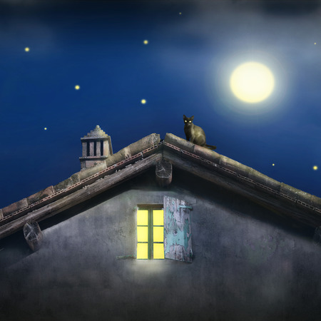nocturne: Illustrative detail of a roof with chimney, window and a black cat at night with moon and stars