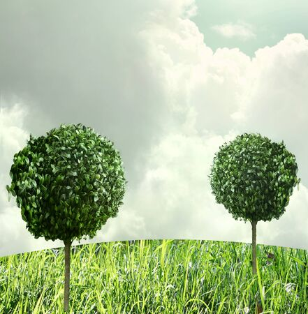 surreal landscape: Surreal landscape with beautiful trees with foliage round