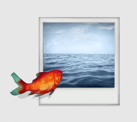 Surreal isolated image on white background  a goldfish that dive from a white paper into a polaroid photo with sea and sky landscape Stock Photo