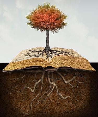 Imagen conceptual que representa un árbol arraigado sobre un libro abierto con las raíces en el subterráneo Foto de archivo