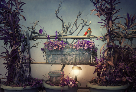 Beautiful artistic image representing a composition of plants branches and a little bird in a surreal setting