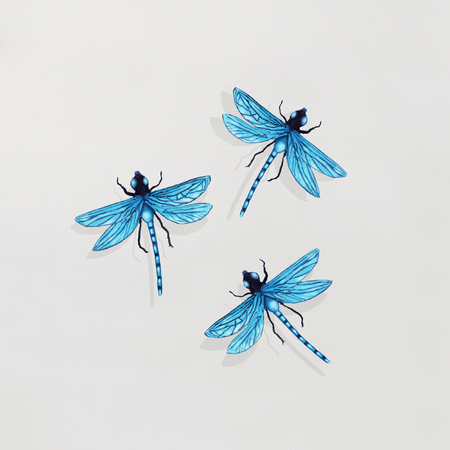 Picture of a painting that represent three beautiful detailed dragonflies flying in circular on white background