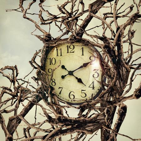 많은 가지가 얽힌 시계를 나타내는 아름다운 초현실적 인 이미지