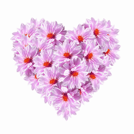Heart shape of pink flowers on white background