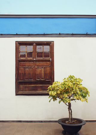 Beautiful detail of a small house with a window in Garachico, Tenerife, Canary Island
