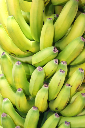 Bunch of bananas typical of the Canary Islands 免版税图像