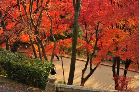 dera: Autumn at Kiyomisu Dera  in Kyoto, Japan Stock Photo