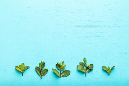 Row of five green mint sprigs bottom of turquoise background.