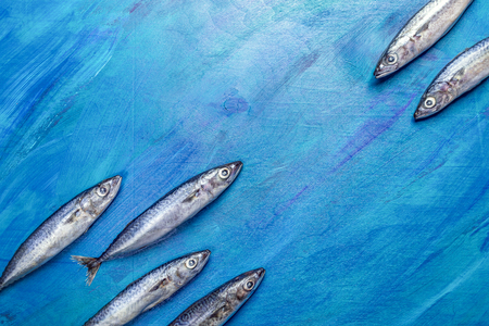 Mackerel fishes as if floating towards each other on painted blue background.