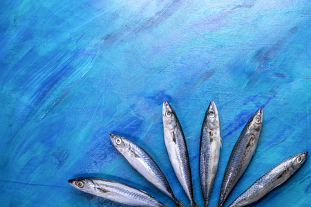 Mackerel fishes laid out as fan on bottom of blue background.
