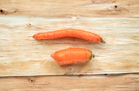 Two non-standard ugly carrots are lying horizontally on tree bark.