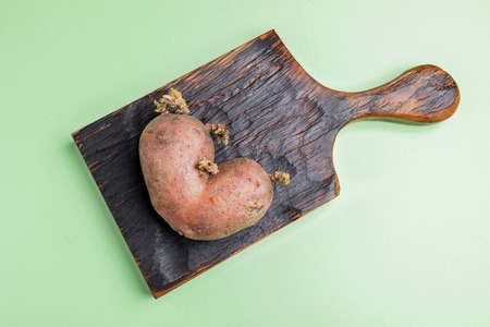 One ugly potato on  burned wooden kitchen board on green background.