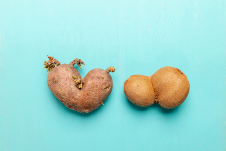 Ugly heart-shaped potato and kiwi on  turquoise background.