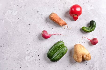 Set of ugly vegetables: potato, tomato, cucumber and radish laid out in circle on concrete background. Zdjęcie Seryjne