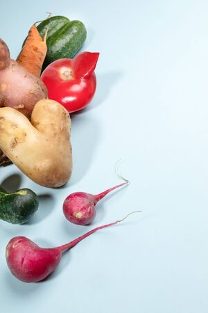 Group of ripe ugly vegetables: potatoes, tomato, cucumbers, carrot and radishes on light blue background. Zdjęcie Seryjne