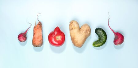 Six ripe ugly vegetables: potato, tomato, cucumber and radish laid out in row on light blue background.