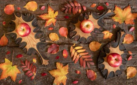 Autumn composition of colorful natural leaves and wooden carved leaves with apples on them on tree bark background.