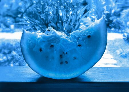 Large chunk of ripe watermelon on wooden railing in tropical garden in trendy color 2020 Classic Blue. Creative blue toning. Selective focus. Stockfoto