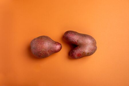 Two non-standard ugly fresh raw potato unusual form lying on trendy orange background. Waste zero food concept. Reasonable consumption. Plant based foods. Top view, flat lay, copy space. Stok Fotoğraf