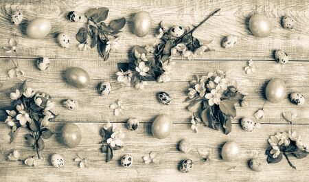 Easter festive flat lay layout of Apple tree twigs and flowers, quail and hen eggs on wooden table background. Retro aged monochrome composition. Top view.