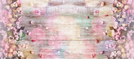 Wide festive Easter banner. Frame of pink Apple tree flowers and quail eggs on painted white wooden background with colorful bokeh above it. Top view, flat lay, copy space. Reklamní fotografie
