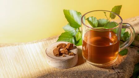 Glass cup of healing beverage of birch mushroom chaga, mushroom pieces, birch twig on wooden plank on yellow backdrop. Trendy healthy beverage, superfood improving immune system. Copy space for text. Фото со стока