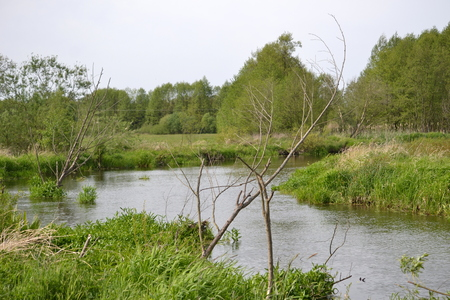 accumulation: The river in central Poland