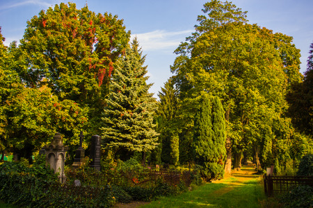 helloween: Cemetery - Helloween