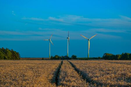 providing: Wind turbines providing clean energy