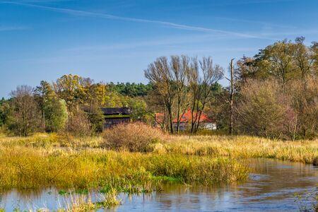 Autumn on the river Grabia, Poland Фото со стока