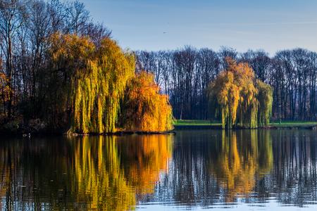 Autumn trees surrounding the bridge.
