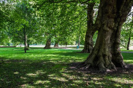 A beautiful park in the city of Cardiff, Wales.