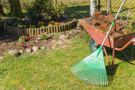 Spring cleaning in the garden.