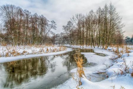 Winter landscapes on a frosty day.