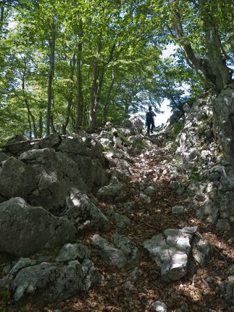 Camino a la cima del Aratz entre ayas Stock Photo - 15855522