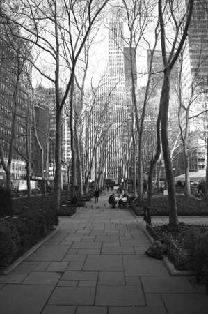 bryant: Bryant Park in the winter time