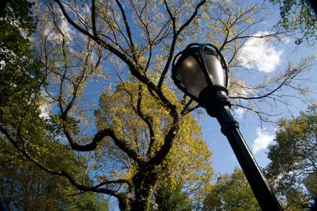 lamp in the park photo