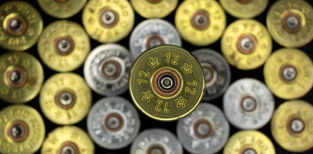 selective focus on macro top view of a fired hunting cartridge on unfocused background 写真素材