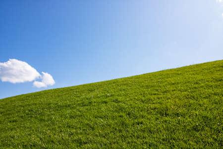 Grass field and cloud like wondows xp wallpaper Standard-Bild