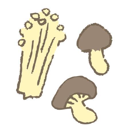 3 kinds of mushrooms (enokidake, matsutake mushrooms, shiitake mushrooms)