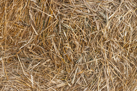 Straw close up  photo