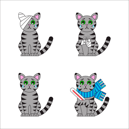 Set of injured and sick cat. Bandaged leg and head, disease. Cartoon sad kitty. Veterinary icons. Vector illustration.