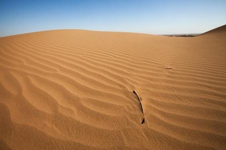 désert Banque d'images
