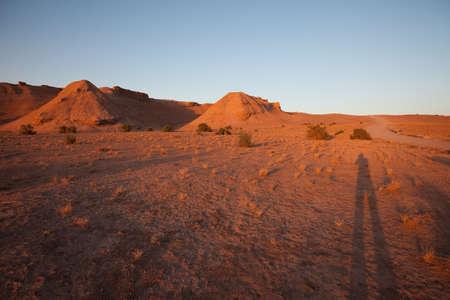 desert Stock Photo - 8406088
