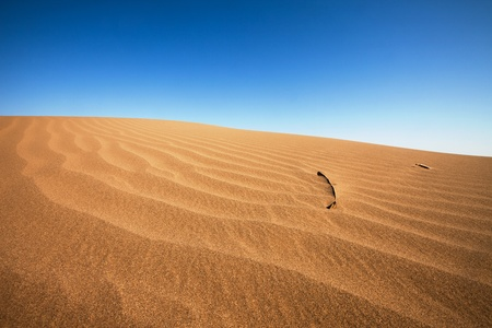 sand dune: desert Stock Photo