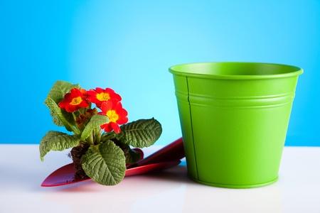 Gardening Stock Photo - 9026401