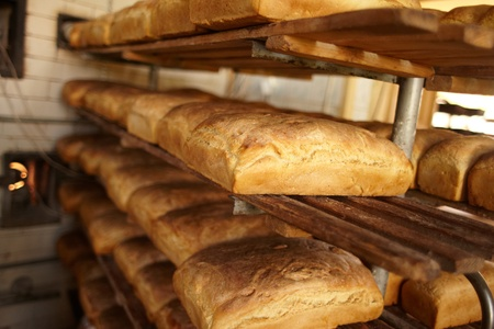 Bakery, bread. photo