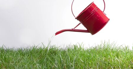 a hand watering green grass with a small bright red watering can  photo