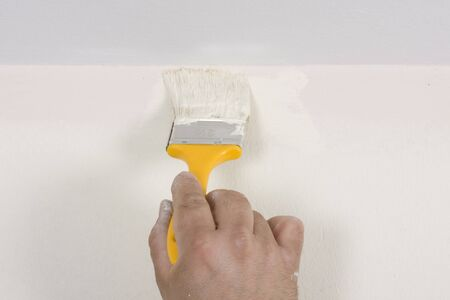 house painter  painting a wall in motion  photo
