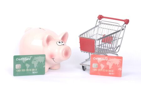 nestegg: Piggy bank on white with a credit   debit card